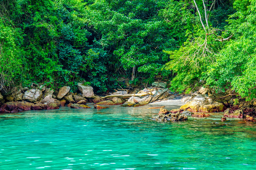 Wonderful Charter Catamaran Holiday   Angra dos Reis   Brazil