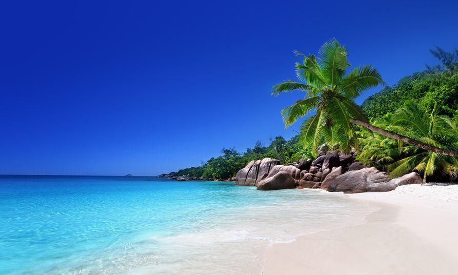 Sailing Catamaran Holiday  | Seychelles  | Spring Holiday | Indian Ocean